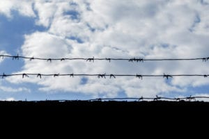 black barbed wire against the sky with clouds, the concept of unfreedom